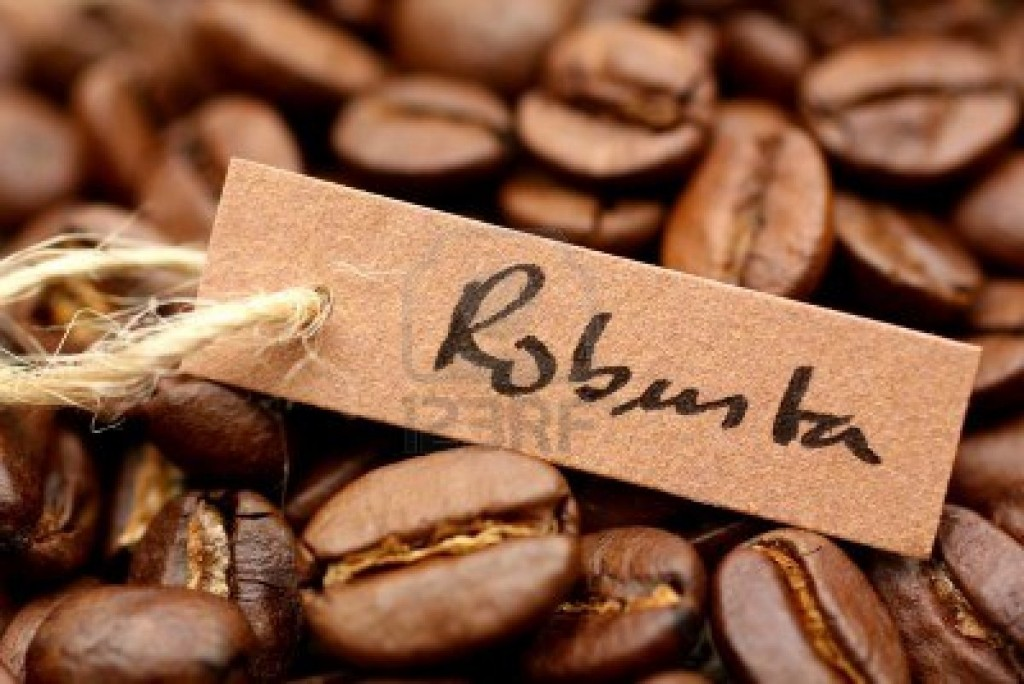 cafe-robusta