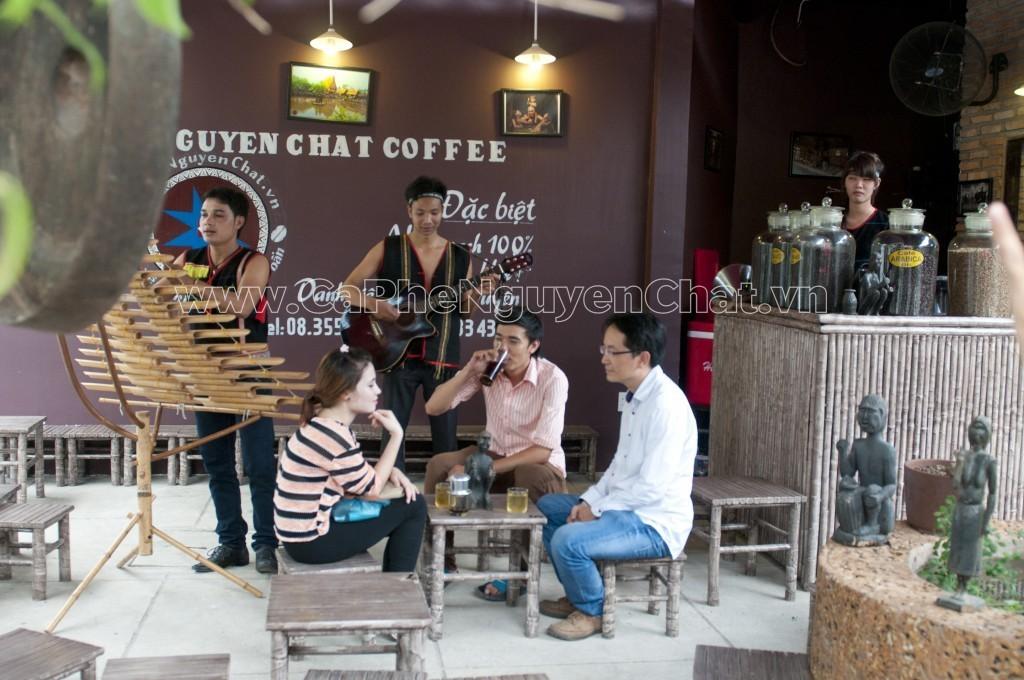Chuyên gia về cafe nguyên chất chia sẻ