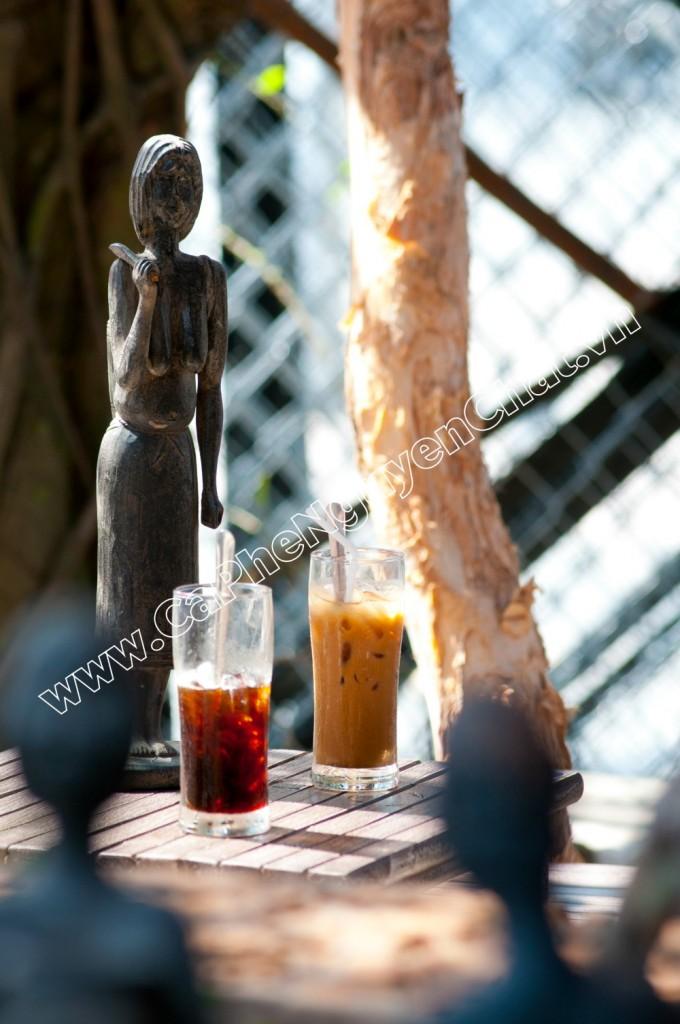 Ly cafe sạch nguyên chất khi để ra ánh nắng có màu hổ phách
