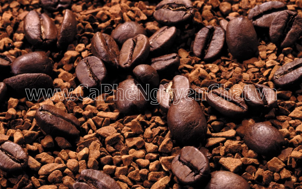 cafe sạch rang xay uy tín, chất lượng cao tây nguyên