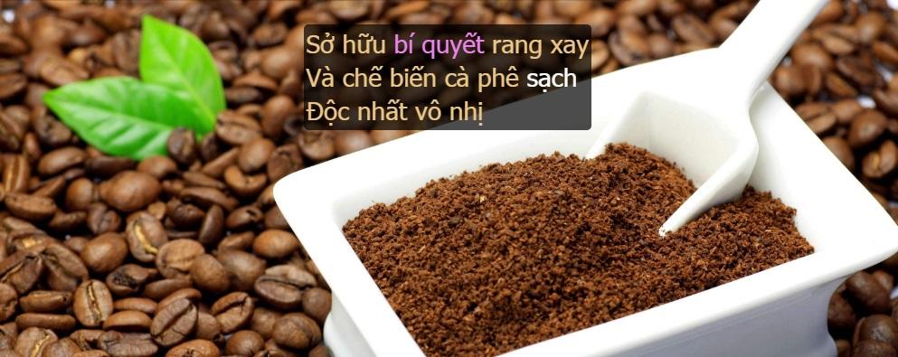 các loại cafe sạch rang xay độc nhất tại Nguyen Chat Coffee