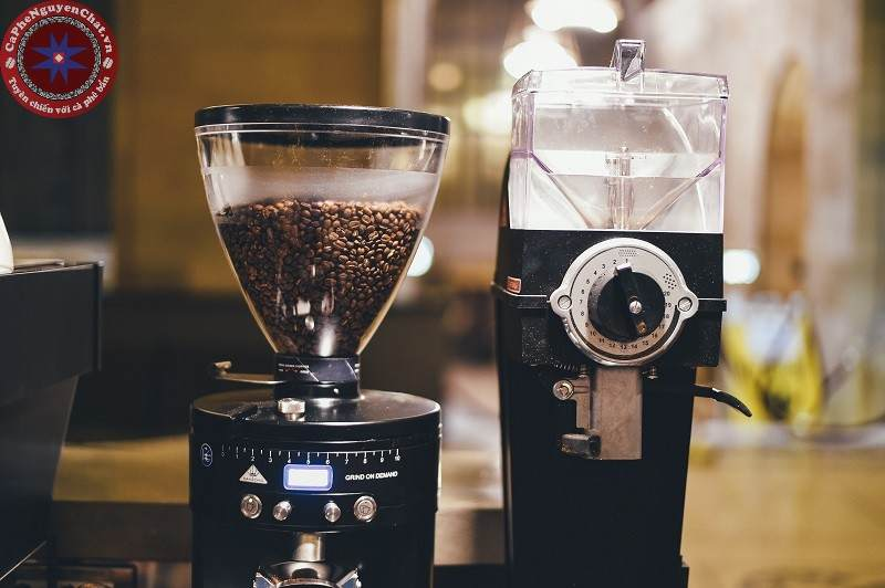 thị trường cafe sạch - Nguyen Chat Coffee
