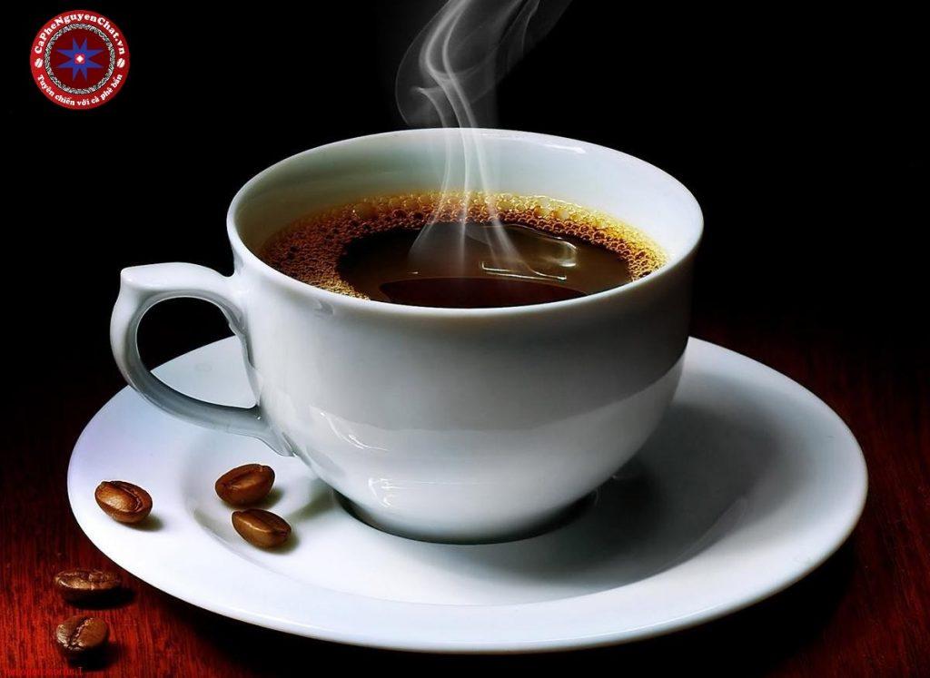 Cà phê từ lâu đã trở thành món thức uống không xa lạ với người dân Việt Nam. Để có được một ly cafe truyền thống đúng chất, người pha chế cafe cũng phải có những bí quyết riêng. Cùng Nguyen Chat Coffee tìm hiểu về bí quyết đặc biệt để có ly cà phê ngon nhé.