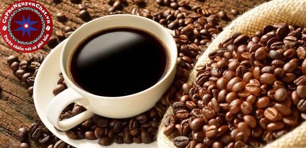 Cùng Nguyen Chat Coffee tìm hiểu nguyên nhân vì sao các quán cafe rang xay lại dễ lấy lòng nhiều khách hàng đến như vậy.