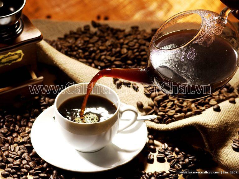 Cà phê nguyên chất giá bao nhiêu