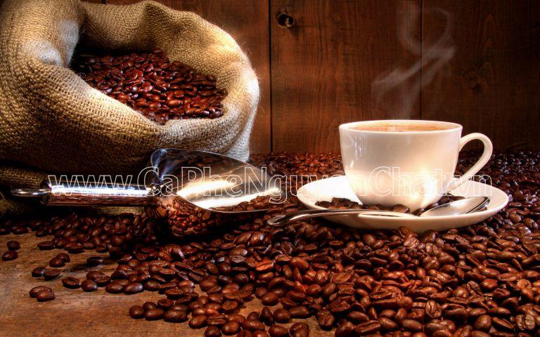 Mua cà phê ngon ở đâu giá tốt?