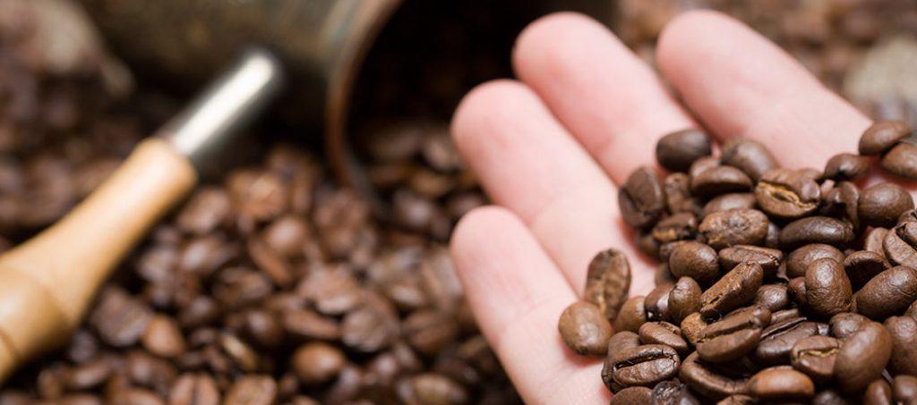 Các loại hạt cafe ngon nhất