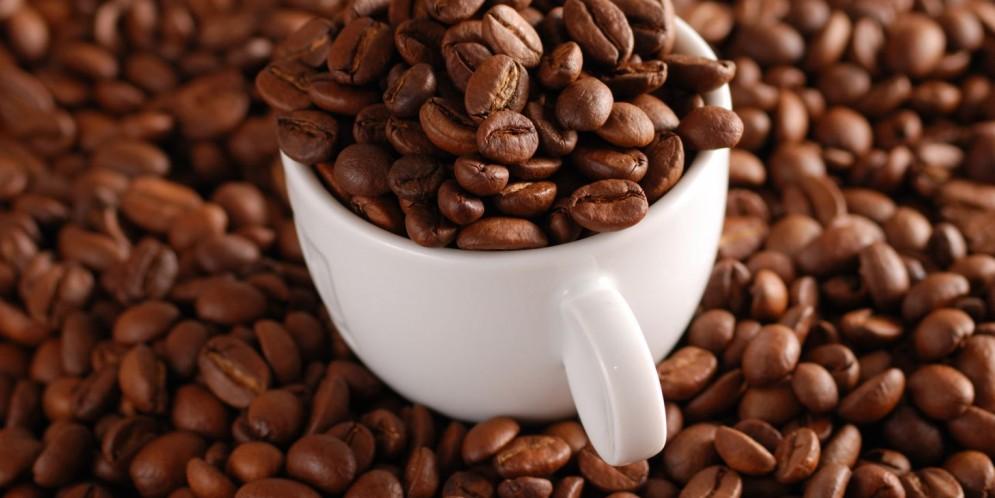 Cung cấp cafe hạt nguyên chất 100%