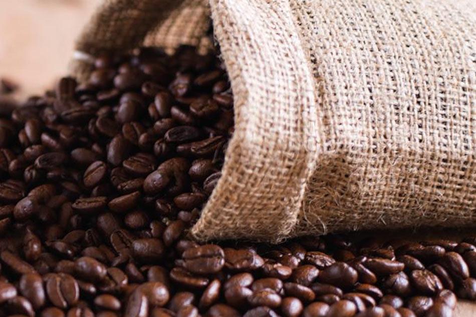 Cập nhật giá cafe hạt