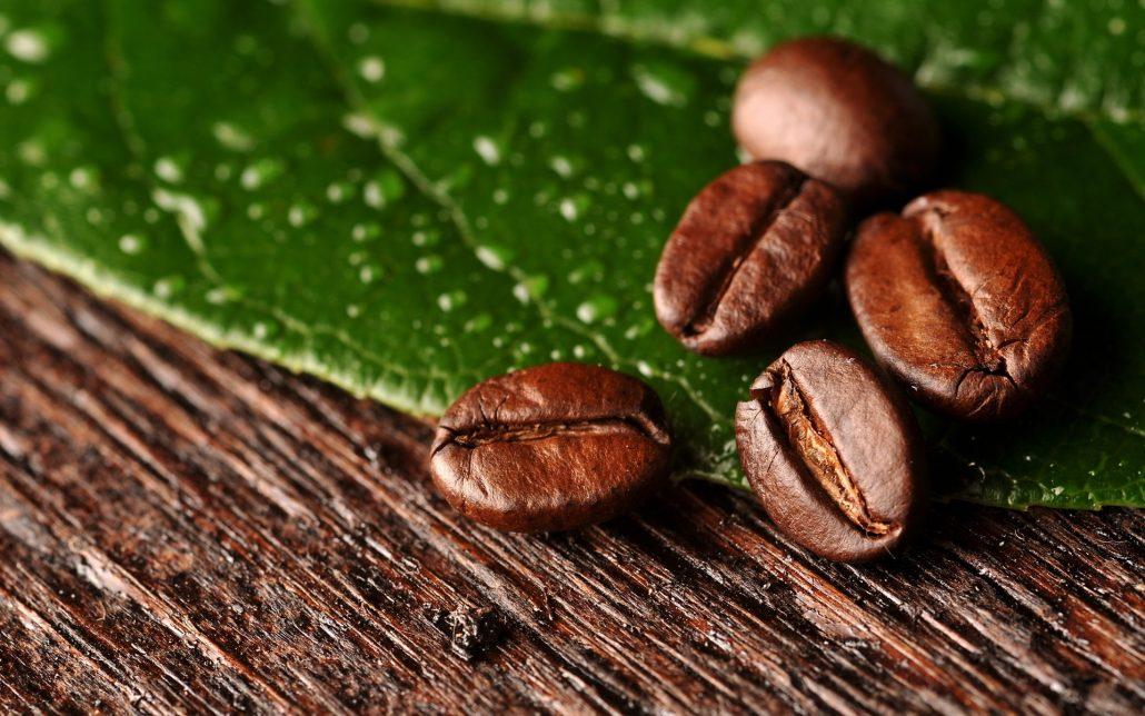 Quyền lợi và nghĩa vụ đôi bên khi hợp tác góp vốn kinh doanh cà phê