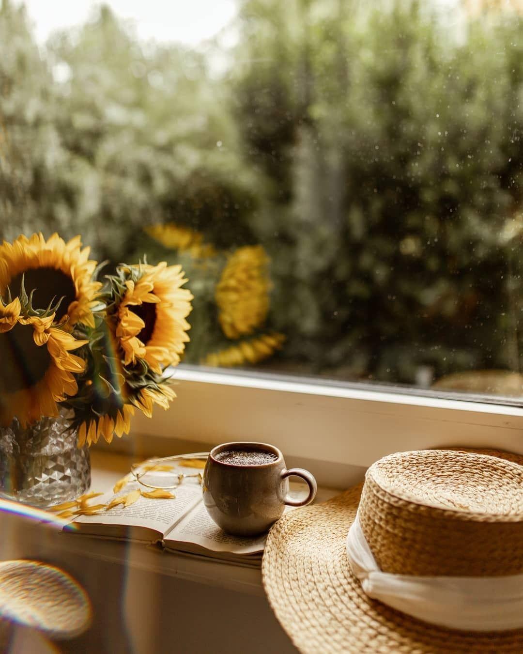 Quán cà phê nên mở vào mùa nào của năm ?